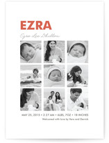 Nine Square Birth Announcements